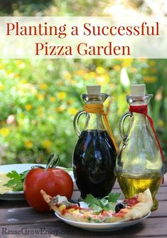 Everyone loves pizza, right? Well how about making it fresh from your own garden??Check out what is needed for Planting A Successful Pizza Garden! reusegrowenjoy.co...