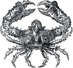 Free Crusty Crab Image