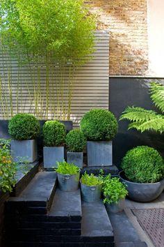 simple green, black and grey garden design, plus horizontal fencing Designer Visit Chris Moss garden, Marcus Harpur photo. Gardenista
