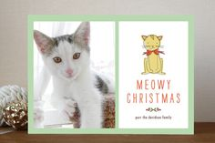 Meowy Christmas Christmas Photo Cards by Lisa Nelson available through Orpheus Photography