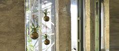 Závesné kvetináče Wind Chimes, Glamour, Outdoor Decor, Design, Home Decor, Elegant, Decoration Home, Room Decor