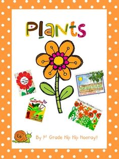 Spring Plant Unit