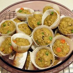 """Bird muffins!! Maybe a bit of peanut butter for """"icing"""" to make a cup cake"""