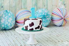 Cake Smash Cake. Mudgee cakes. Nikki Burke photography. Party Box Custom Sweets