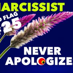 Red Flag of a Narcissist #25: Never Apologizes @tracyamalone
