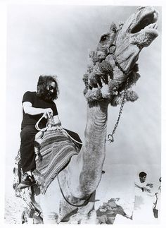 Grateful Dead in Egypt: Jerry Garcia riding a camel Dead Pictures, Cool Pictures, Dead Images, Grateful Dead Image, Bob Weir, The Warlocks, Dead And Company, The Jam Band, Happy Hippie