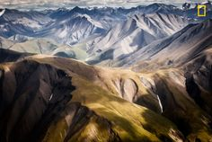 Photo and caption by Alain Boudreau / National Geographic Nature Photographer of the Year Contest