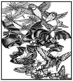 Pollinator Swarm - Beehive Design Collective Store