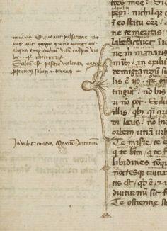 Octopus fingers. Berkeley, Bancroft Library, BANC MS UCB 085, Italy, 1350-1400. Erik Kwakkel's tumblr.