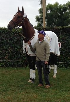 "Jockey Gary Stevens with Mucho Macho Man who won the 2013 Breeders' Cup Classic. On Nov 5th Gary tweeted this photo, saying ""Massive Horse, quiet smile. Nobody moves, nobody gets hurt."" Love it!"