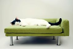 Modern Pet Bed, chaise lounge chair (Cat Bed / Small Dog Bed). $145.00, via Etsy.