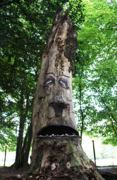 tree as personification Discuss and say what is personification and say how does the poet personification in the poem on killing a tree.