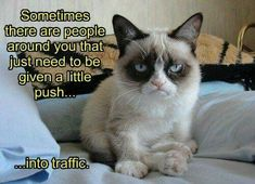 Grumpy Cat Wants To Push People Into Traffic.....