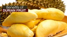 16 Health and wellness Benefits of Durian Fruit | SAMLEY.CO
