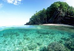 Great Barrier Reef  soon to be my new home.
