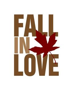 Fall in love quote