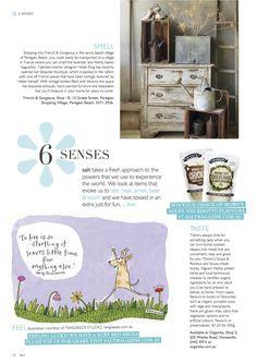 Write up in Salt Magazine