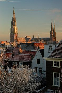Delft, Netherlands - #Delft #travel #holland The home of my favorite artist, Johhan Van Vermeer