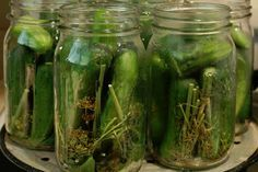 Shelf stable dill pickles with no hot water bath. Made these last summer & they are GREAT. They stay crunchy. I did have some trouble getting all the lids to seal. Canning Tips, Home Canning, Canning Recipes, Canning Dill Pickles, Water Bath Cooking, Canning Equipment, Canning Vegetables, Canned Food Storage, Pickling Cucumbers