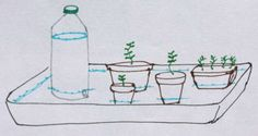 Self-regulating Watering System Self Watering plant ideas for people who vacation. Automatic Watering System, Plant Watering System, Self Watering Plants, Orchids In Water, Water Plants, Potted Plants, Indoor Plants, Cleaning Vinyl Siding, Garden Irrigation System