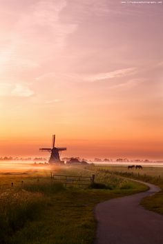 Misty morning - A sunrise in Dutch farmland(groningen netherlands) Beautiful World, Beautiful Places, Travel Tips For Europe, Amsterdam Holland, Summer Painting, Morning Sunrise, Morning View, Country Landscaping, Le Moulin