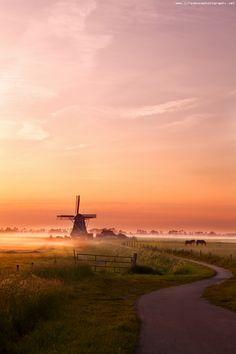 Almost summer! ;)   Landschap foto van catolla   Zoom.nl