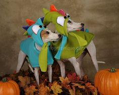 The Colorful Dragon Fully lined dog coat with by hatz4brats, $55.00