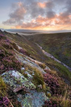 sunrise over tavy cleave viewed from Sharp Tor with heather in the foreground by Alex Nail