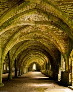 Fountains Abbey Cellarium - United Kingdom