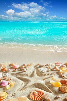 Design Art Designart Caribbean Sea Starfish Beach And Shore Canvas Art Print – 16 - Resim Burada Summer Wallpaper, Beach Wallpaper, Wallpaper Backgrounds, Tropical Wallpaper, Trendy Wallpaper, Beach Canvas Art, Canvas Art Prints, Caribbean Sea, Beach Scenes