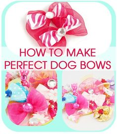 Cold Hands Warm Heart: Perfect Dog Bows (Tip from a Professional Dog Groomer) - Pets Dog Hair Bows, Dog Bows, Grooming Salon, Pet Grooming, Yorkies, Dog Crafts, Heart Crafts, Dog Items, Halloween Disfraces