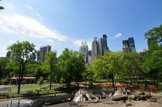 Fun things to do in NYC. Note especially remote control sailboats in Central Park. $11 per 30 minutes.