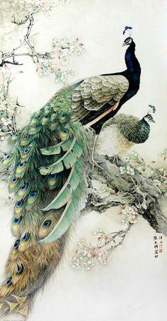 Passaro pinturas en 2019 Peacock art Colorful drawings y Bird art Peacock Painting, Peacock Art, White Peacock, Peacock Colors, Ink Painting, Watercolor Peacock Tattoo, Chinese Painting Flowers, Dandelion Painting, Chinese Flowers