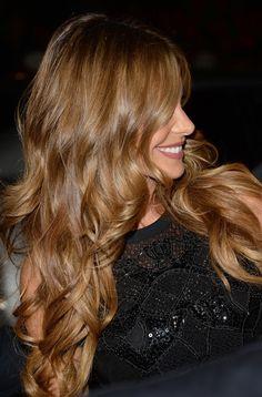 More Pics of Sofia Vergara Long Curls