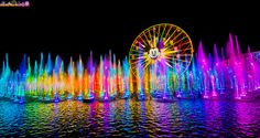 World of Color at Disney California Adventure. You MUST watch it from the front row to truly experience it. WOW!