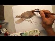 690 Art Class - Watercolour Bird painting