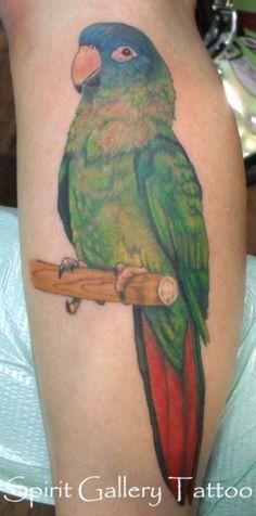 Pin by Magdalena Klauzińska on inspiracje Parrot Tattoo, Picture Tattoos, Watercolor Tattoo, Tatting, Birds, Ink, Pets, Bird Tattoos, Tatoos