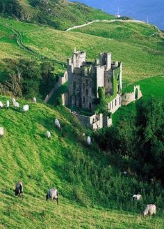 Medieval Castle in Ireland