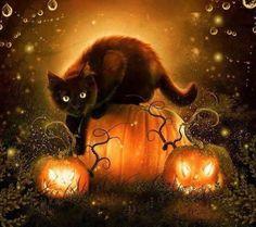 Black Cat art black cat print Halloween by EnchantedWhispersArt Samhain Halloween, Fete Halloween, Halloween Cat, Holidays Halloween, Halloween Pumpkins, Halloween Decorations, Halloween 2019, Halloween Chat Noir, Image Halloween