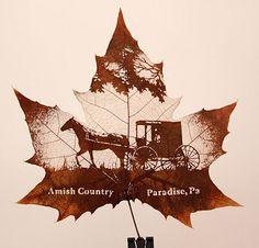 Leaf Carving Art by Nature's Art. « A criação