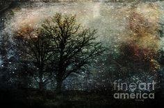 #StarryNight #MetalPriints #CanvasPrints etc by Randi Grace Nilsberg