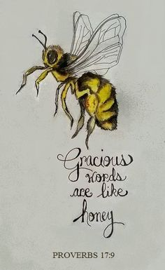 Proverbs 17:9...nice buzz fly by...the light of my life, eternally yours
