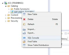SAP HANA Central : Create Procedure in HANA - Do Not Use SQL Editor Any More