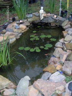 Installing a preformed pond yard pinterest gardens for Shallow garden pond