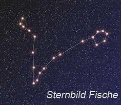 Sternbild Fische