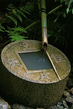 Ryoan-ji Temple, Kyoto, Japan                  ここの蹲踞には:「吾唯知足」( I am content with what I am (have); Rich is the person who is content with what he is. )