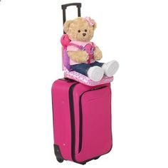 Build A Bear Suitcases On Ebay