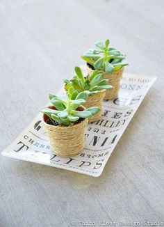 Twine wrapped pots, only one example of how great things can look wrapped.