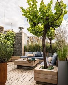 Garden Types When you live in the beautiful South Africa an outdoors entertainment area is an absolute must! Garden Types, Terrace Garden, Lawn And Garden, Rooftop Terrace, Garden Kids, Party Garden, Lush Garden, Garden Pool, Shade Garden