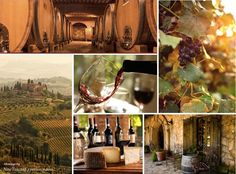 The Magic of Tuscany's Wine Country